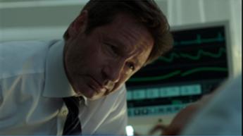 """Sanooko Mulder tässä """"honey""""? Jotkut ovat sitä mieltä."""